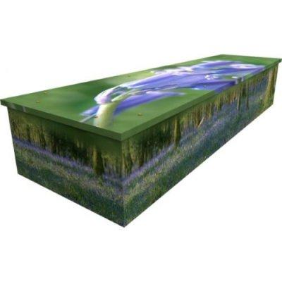 Creative_coffins.jpg